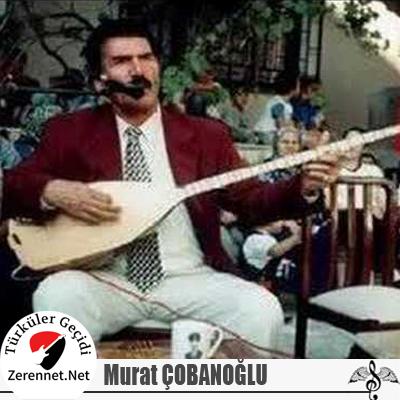 murat-cobanoglu